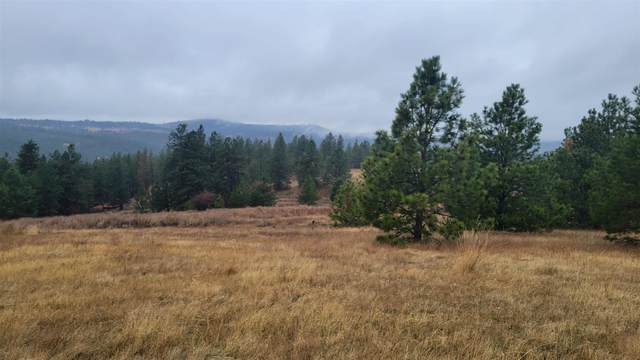 13845 (Approx) S Serenity Ln, Valleyford, WA 99036 (#202124282) :: The Spokane Home Guy Group