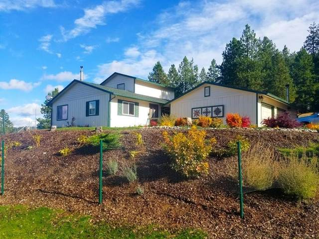 19014 N Halliday Rd, Mead, WA 99021 (#202124310) :: Freedom Real Estate Group
