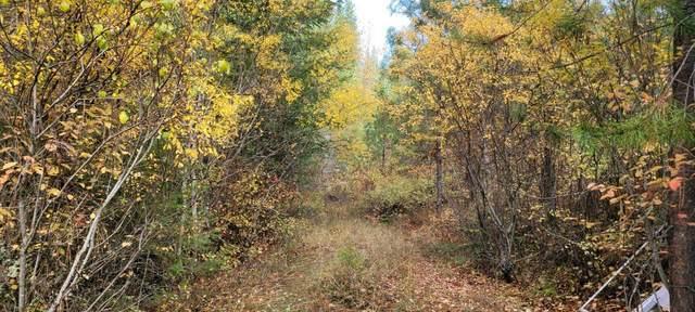 4610 B Hidden Rd, Springdale, WA 99173 (#202124360) :: The Spokane Home Guy Group