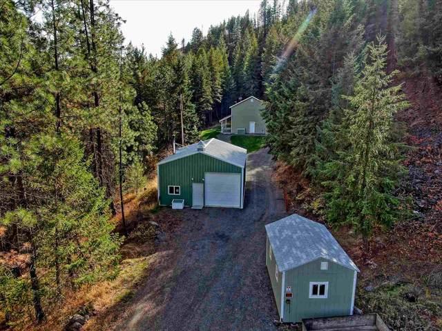 31835 Hawk Creek Ranch Rd. N. Rd, Davenport, WA 99122 (#202124365) :: Cudo Home Group