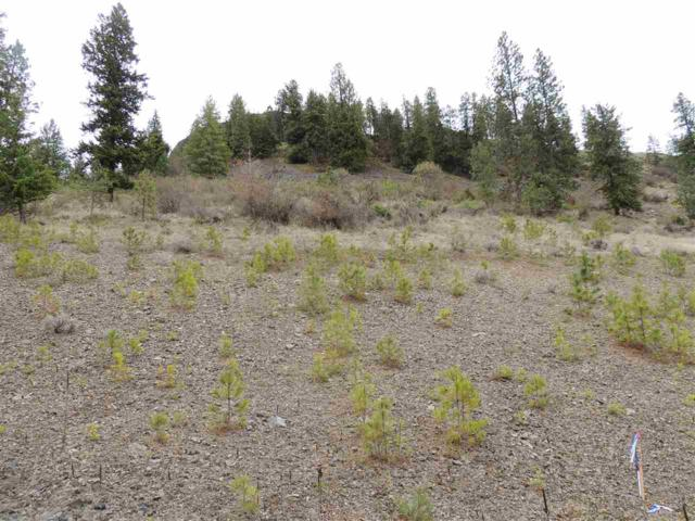 39551 Vantage Pt. N. Lot 16, Seven Bays, WA 99122 (#201814208) :: Prime Real Estate Group