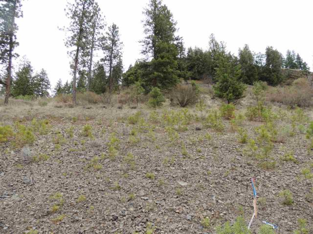 39561 Vantage Pt. N. Lot 15, Seven Bays, WA 99122 (#201814252) :: Top Agent Team