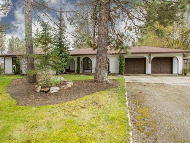 7313 W Johannsen Ave, Nine Mile Falls, WA 99026 (#201814990) :: 4 Degrees - Masters