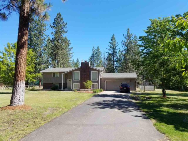 13720 W Sunnyvale Dr, Nine Mile Falls, WA 99026 (#201820948) :: The Synergy Group
