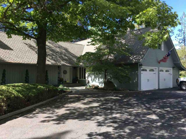 11320 N Kathy Dr, Spokane, WA 99218 (#201823125) :: Five Star Real Estate Group