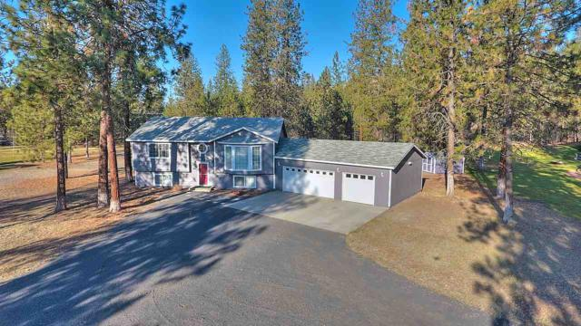 6496 Long Lake Dr, Nine Mile Falls, WA 99026 (#201827447) :: Top Agent Team