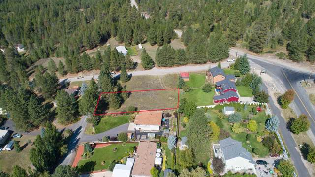 36216 N Sheets Rd, Elk, WA 99009 (#201828195) :: The Synergy Group