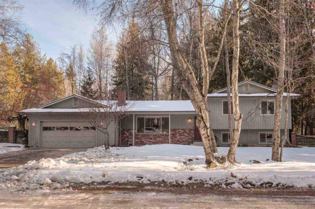51 Lutzke Dr Ponderay, Other, ID 83852 (#201910504) :: The Synergy Group