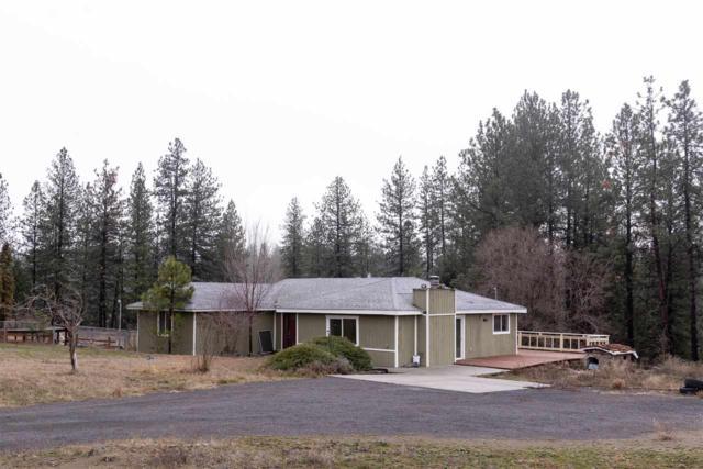 3704 E Pine Ct, Mead, WA 99021 (#201910635) :: THRIVE Properties