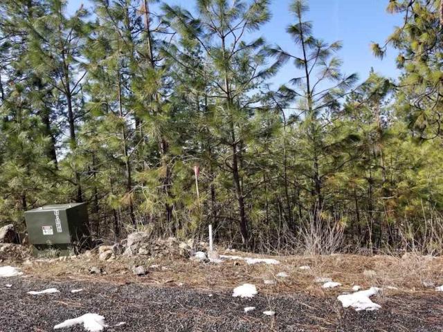 NNA Pine Ridge (#1616) Way, Nine Mile Falls, WA 99206 (#201913028) :: THRIVE Properties