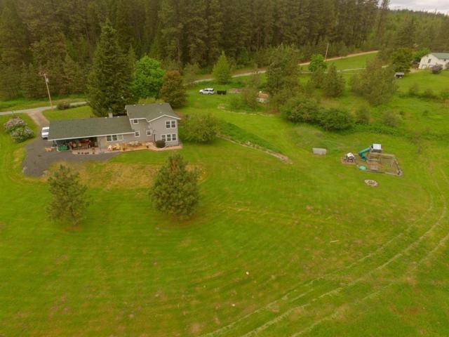 124 Nina Rd, Cusick, WA 99119 (#201913432) :: Northwest Professional Real Estate