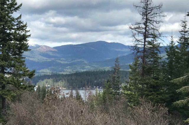 NNA E Winter Pines Ln, Newman Lake, WA 99025 (#201913703) :: RMG Real Estate Network