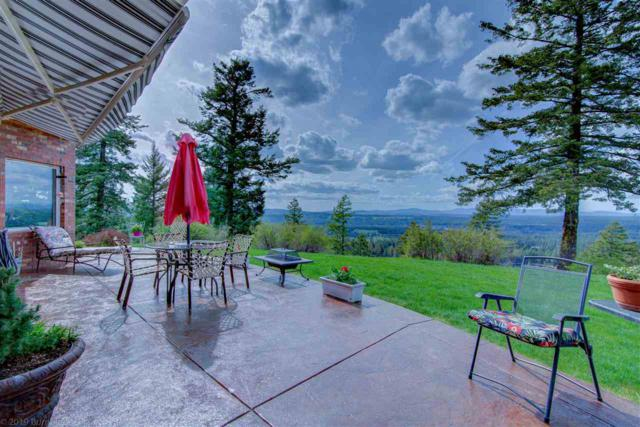 7225 E Orchard Bluff Rd, Chattaroy, WA 99003 (#201915054) :: The Synergy Group