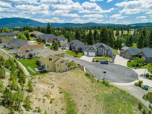 16307 E Whirlaway Ln, Veradale, WA 99037 (#201915871) :: The Synergy Group