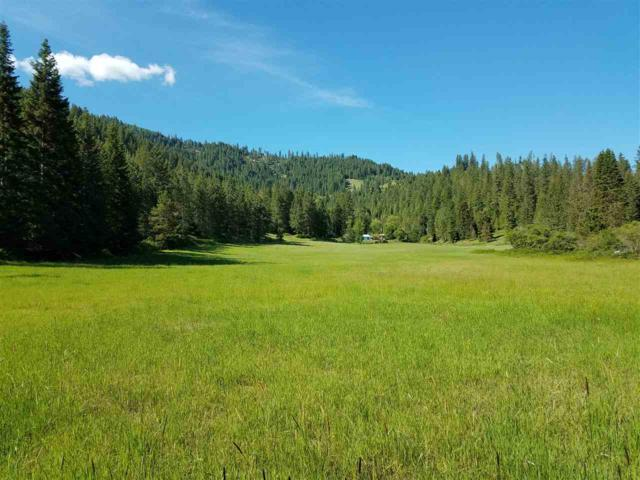25403 N Fjord Rd, Rathdrum, ID 83858 (#201915976) :: RMG Real Estate Network