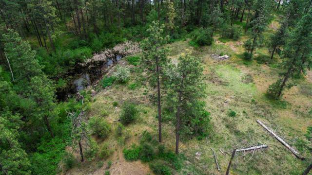 XXXX S Clear Lake Rd, Medical Lake, WA 99022 (#201916274) :: Top Agent Team