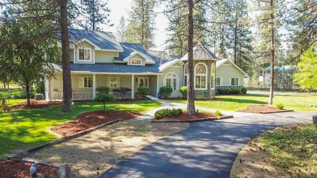 20015 N Newport Rd, Colbert, WA 99005 (#201917314) :: Chapman Real Estate