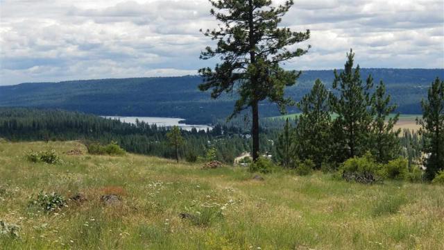 TBD Pine Ridge Way, Nine Mile Falls, WA 99206 (#201918250) :: 4 Degrees - Masters