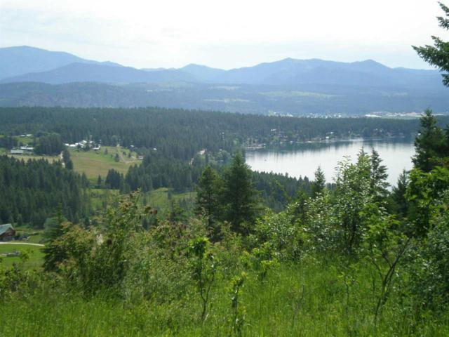 3X11 Hoag Rd, Valley, WA 99181 (#201918322) :: 4 Degrees - Masters
