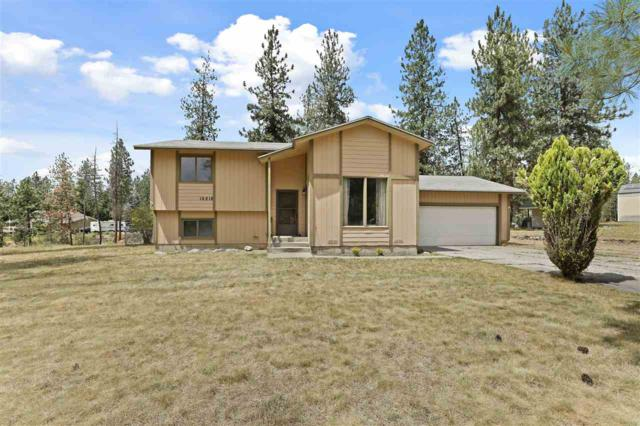 16818 N Columbine Ct, Nine Mile Falls, WA 99026 (#201918415) :: The Hardie Group