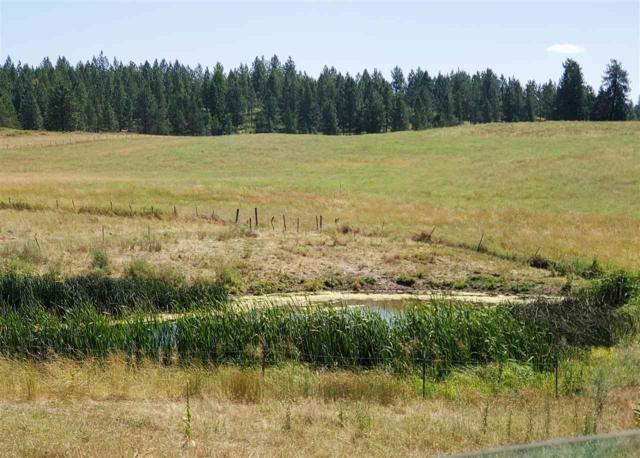 37XX E Jump Off Joe Rd, Valley, WA 99181 (#201921260) :: RMG Real Estate Network