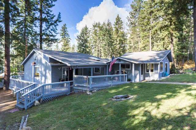 4547 E Deer Lake Rd, Loon Lake, WA 99148 (#201924656) :: The Synergy Group