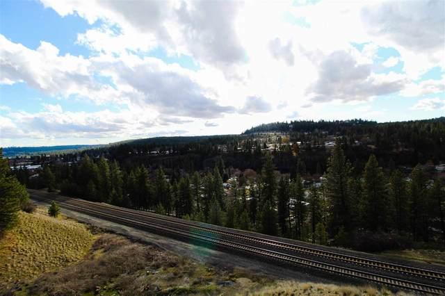1010 S Cannon St, Spokane, WA 99204 (#201924921) :: The Synergy Group
