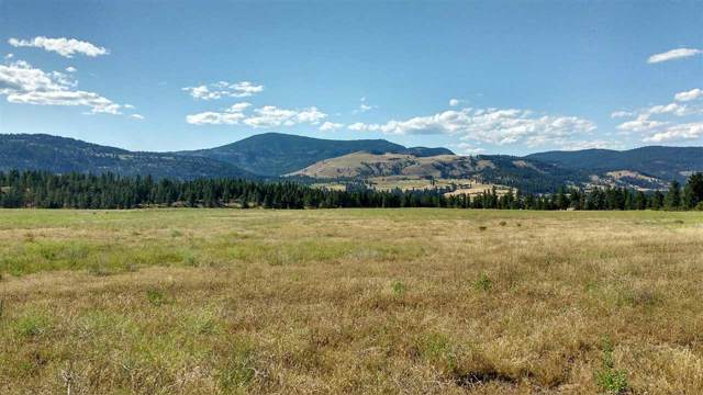 2154 S Hwy 25 Hwy, Rice, WA 99167 (#202010691) :: Prime Real Estate Group