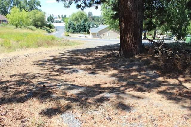 166 NE Stringham Rd, Rockford, WA 99030 (#202011313) :: The Spokane Home Guy Group
