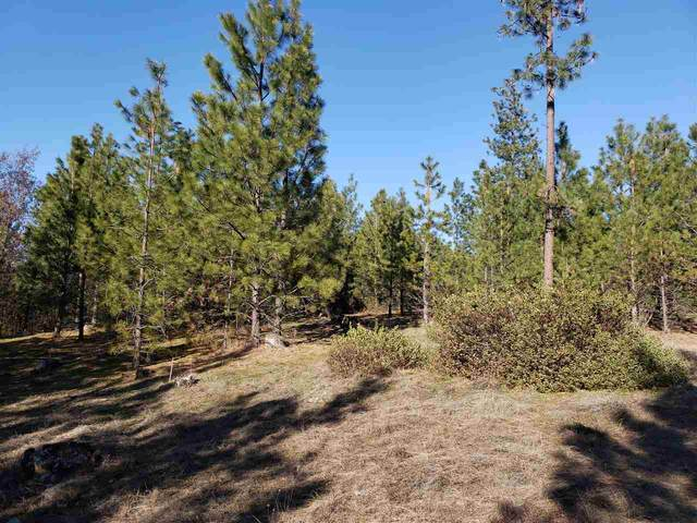 139X Ponderosa Way, Kettle Falls, WA 99141 (#202013091) :: Prime Real Estate Group