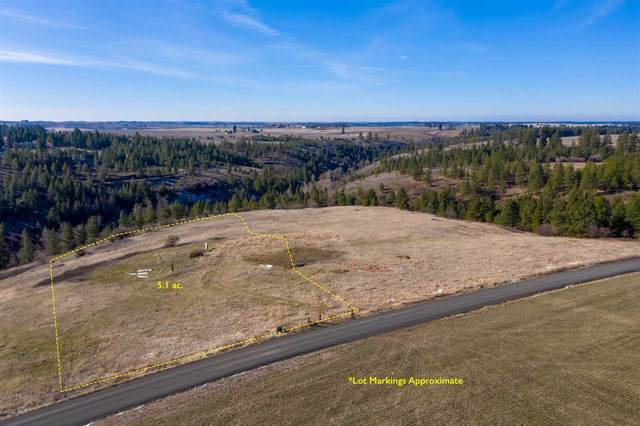 13712 S Dunn Rd, Valleyford, WA 99036 (#202013113) :: Prime Real Estate Group