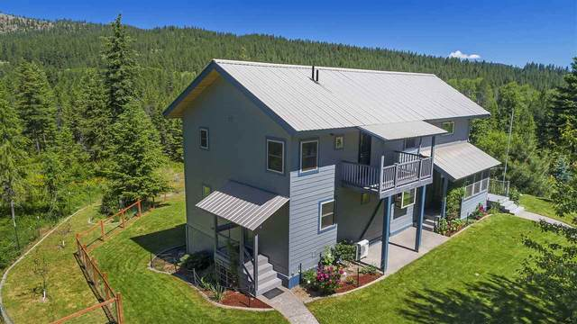 4130A Gardenspot Rd, Loon Lake, WA 99148 (#202013363) :: The Synergy Group