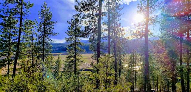 TBD Highway 231 Hwy, Valley, WA 99181 (#202013621) :: RMG Real Estate Network