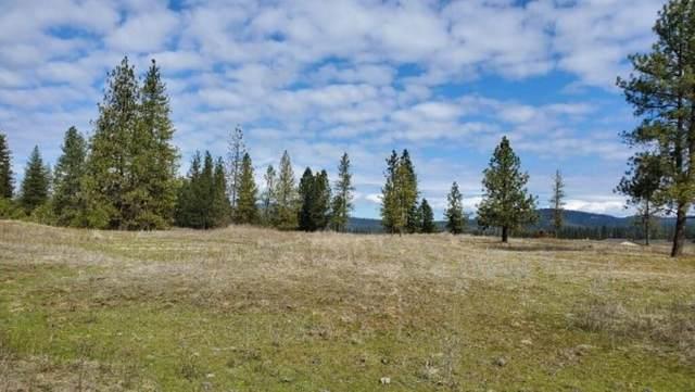 5674A Jergens Rd, Nine Mile Falls, WA 99026 (#202013822) :: The Spokane Home Guy Group