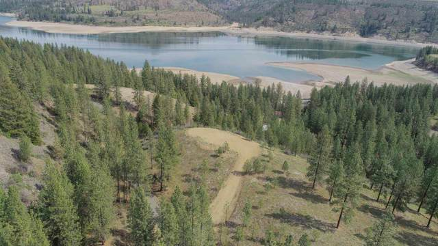 42051 Porcupine Bay Rd. N. Lot 6 Narrows S, Davenport, WA 99122 (#202013851) :: Northwest Professional Real Estate