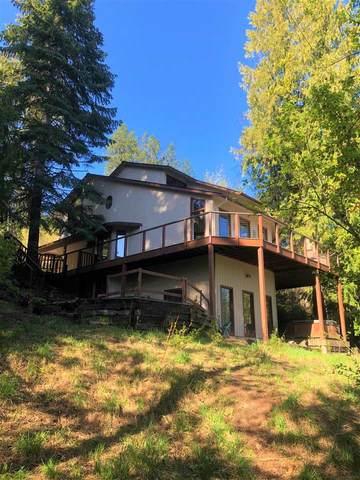 11624 N West Newman Lake Dr, Newman Lake, WA 99025 (#202015022) :: The Hardie Group