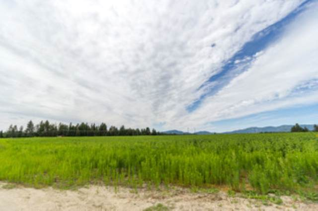 5815 W Mule Deer Ln Lot 12, Deer Park, WA 99006 (#202019082) :: The Spokane Home Guy Group