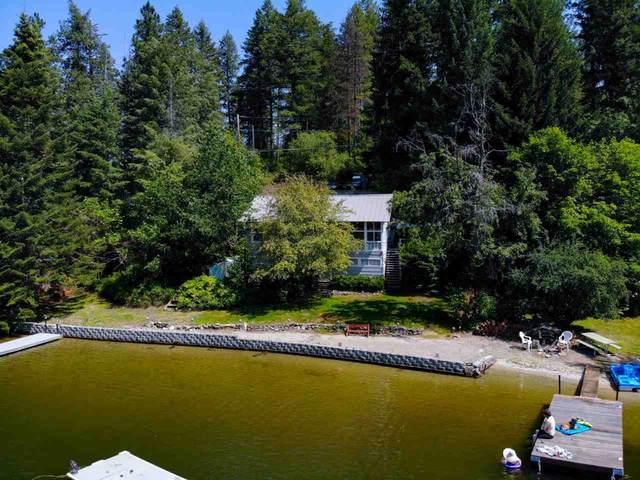 12226 N West Newman Lake Dr, Newman Lake, WA 99205 (#202019569) :: Top Spokane Real Estate