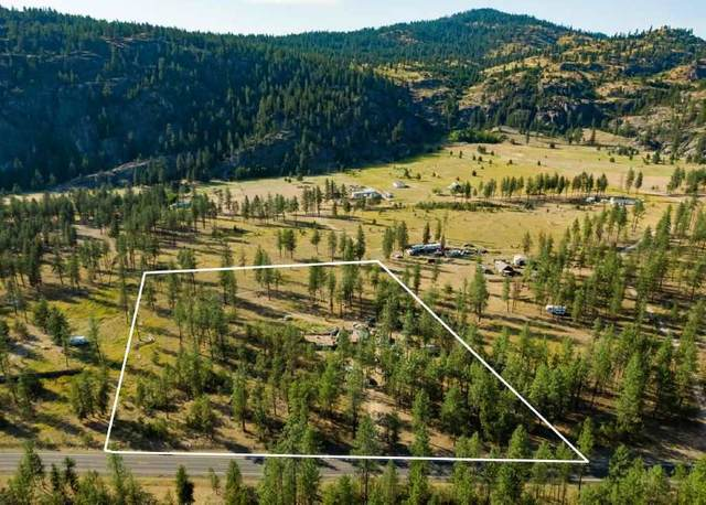 7276 Highway 291 Hwy, Tumtum, WA 99034 (#202020109) :: Top Agent Team