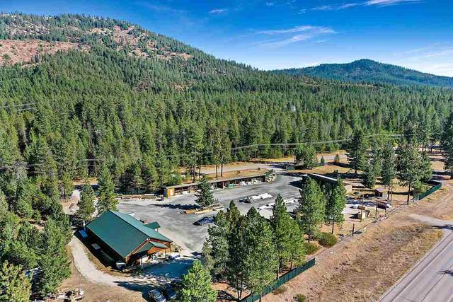 3805 Agar Rd, Loon Lake, WA 99148 (#202022608) :: Freedom Real Estate Group