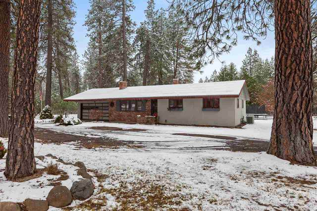 27223 N Bear Lake Rd, Chattaroy, WA 99003 (#202024836) :: Freedom Real Estate Group
