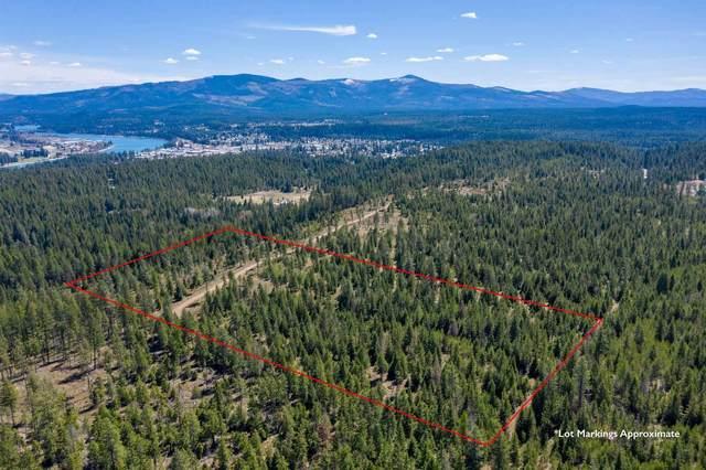 701 Happy Trails Ln, Newport, WA 99156 (#202110114) :: Bernadette Pillar Real Estate