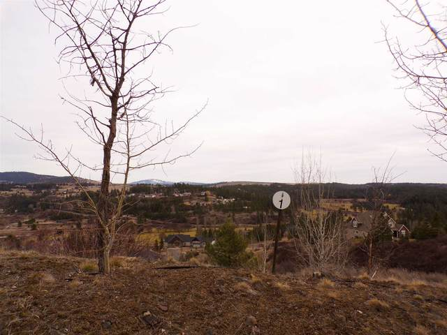 12121 S Quail Creek Ln Lot 1, Block 20, Spokane, WA 99224 (#202112147) :: Parrish Real Estate Group LLC