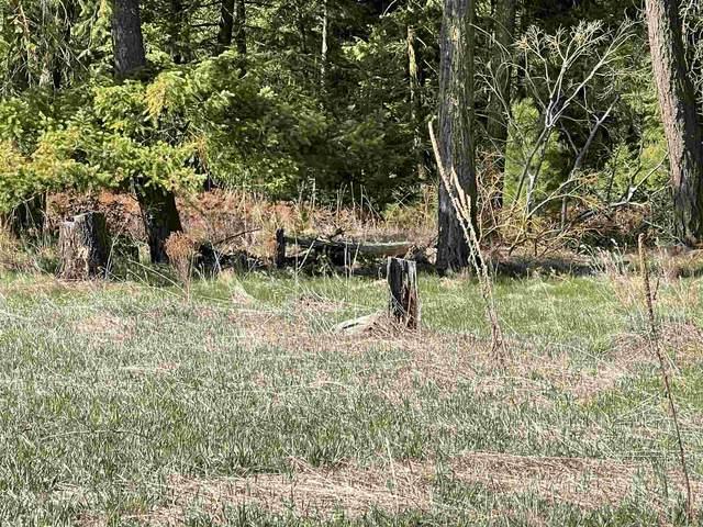 6XXX W Staley Rd Parcel 7, Deer Park, WA 99006 (#202113808) :: The Hardie Group