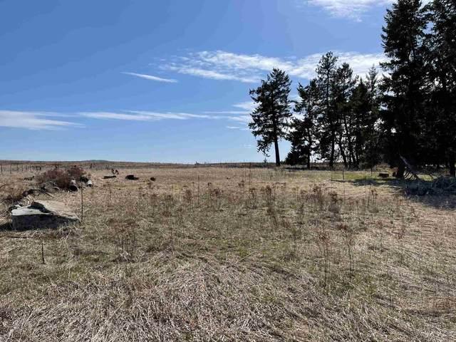6XXX W Staley Rd Parcel 8, Deer Park, WA 99006 (#202113809) :: Parrish Real Estate Group LLC