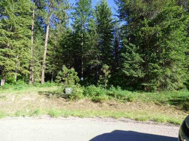 4209 Fantasy Ct, Loon Lake, WA 99148 (#202113891) :: Inland NW Group