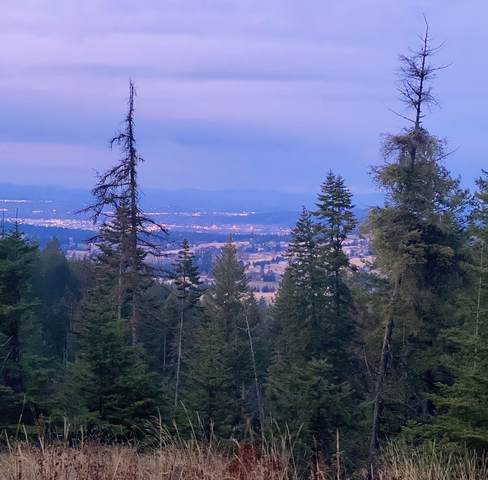 NNA S Corkery Rd, Spokane, WA 99223 (#202114101) :: Inland NW Group