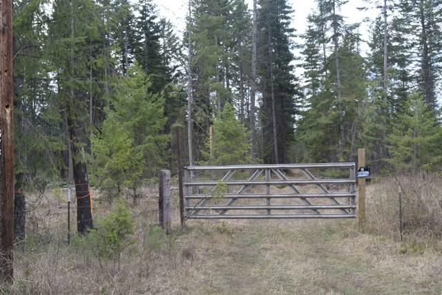 151XX E Oregon Rd, Elk, WA 99009 (#202114178) :: The Hardie Group
