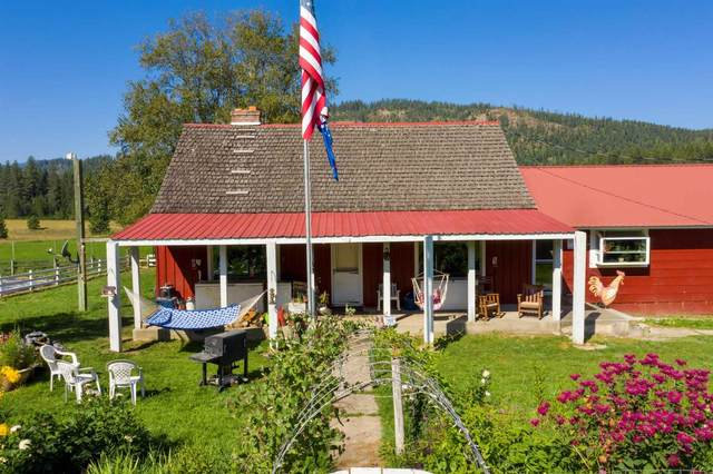 1851 Box Canyon Rd, Ione, WA 99139 (#202114514) :: Elizabeth Boykin   Keller Williams Spokane