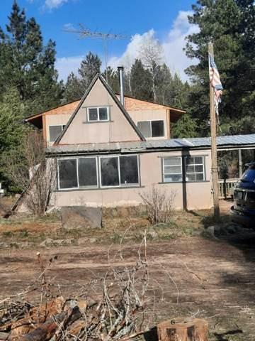 4203 W Lumberg Rd, Springdale, WA 99173 (#202114727) :: Elizabeth Boykin | Keller Williams Spokane